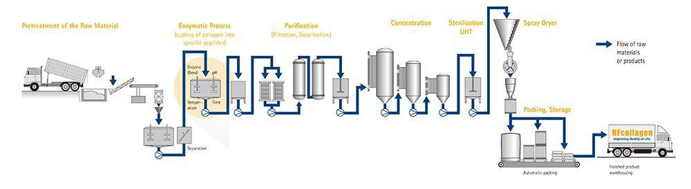 hydrolyzed collagen powder bovine