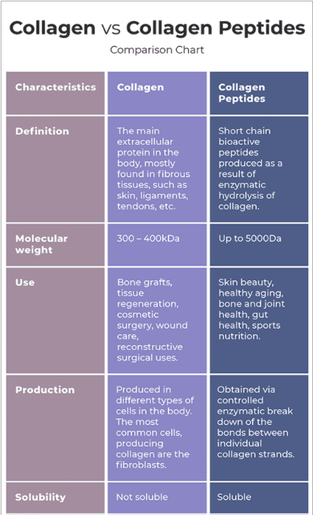 Difference Between Collagen and Collagen Peptides